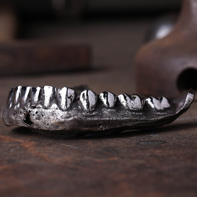 Human Jaw Sculpture Paper Weight Conversational Piece