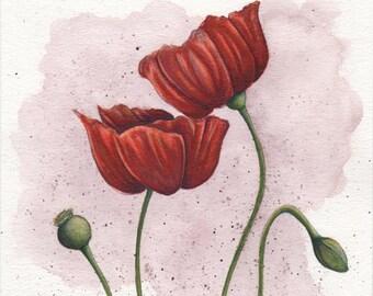 Poppies - 8x10in. Original Watercolor Painting
