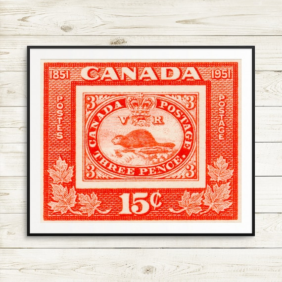 Canadian Beaver Wall Art Cottage Canada Canadian Beaver Etsy