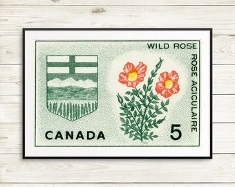 Alberta Canada, Edmonton Alberta, Wild Rose, Rose art, Canadian Rockies, Rocky Mountains, AB Canada, Calgary AB, Edmonton AB, Medicine Hat