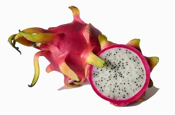 Dragon Fruit Seed Oil (Pitaya Seed Oil ) 30 ml / 1 fl  oz  | Anti-Aging  Beauty Oil