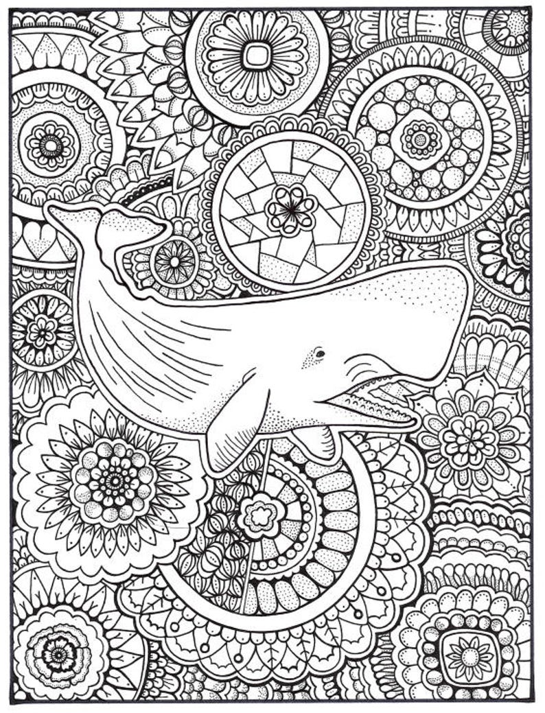 - Whale Coloring Page Coloring Book Pages Printable Adult Etsy