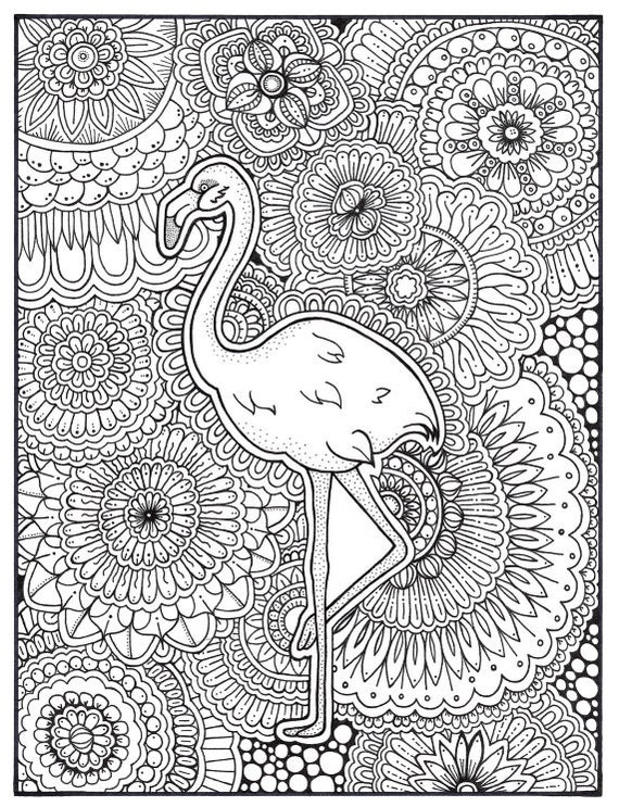 Flamingo Coloring Page, Coloring Book Pages, Printable Adult Coloring, Hand  Drawn, Art Therapy, Instant Download Print