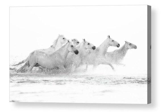 Lienzo Arte Impresión Tigre Blanco Negro Animal obra de arte A1