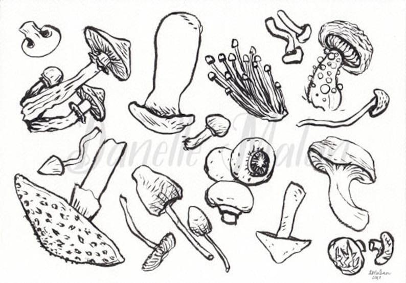 ORIGINAL  Inky Shrooms image 0