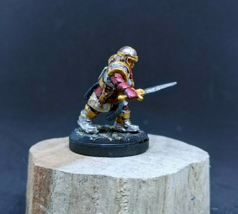 Custom Painting Service for a  Dwarf Female 28mm WizKids Miniature Dungeons and Dragons Miniature