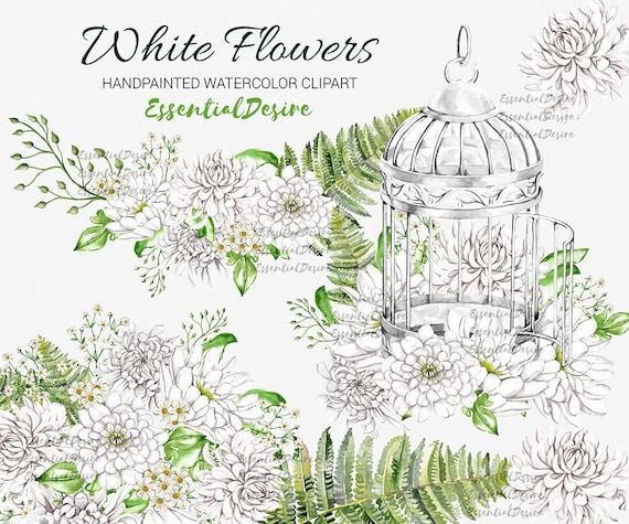 White flowers watercolor clipart silver bird cage gypsophila etsy image 0 mightylinksfo