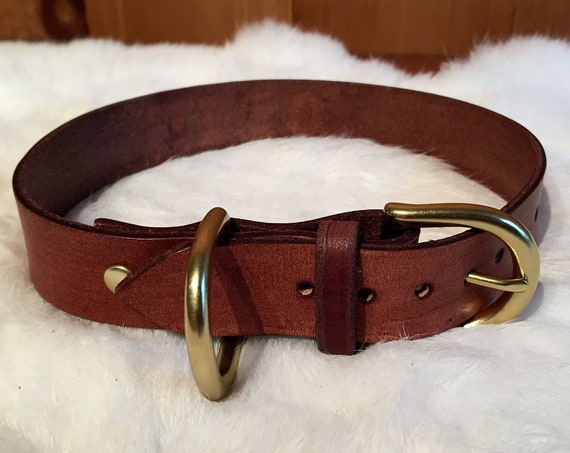 Personalized Brown Leather Dog Collar With Traditional Buckle