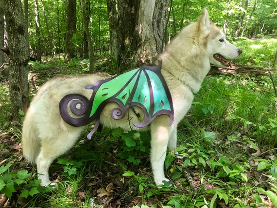 "Fairy Dog Wings with Free Harness // ""Flutter-pup"""