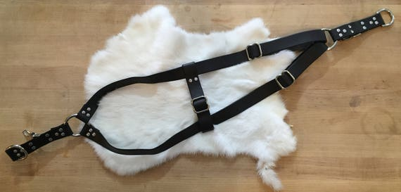 Black Leather Step-in Dog Harness