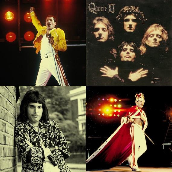 Freddie Mercury Stone Coa...