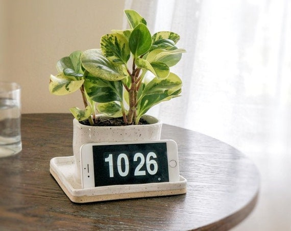 Phone Stand Desk Planter