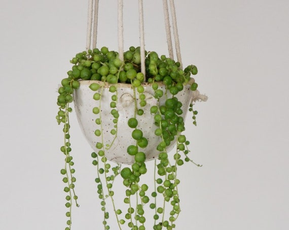 Natürel Knotty - Hanging Planter