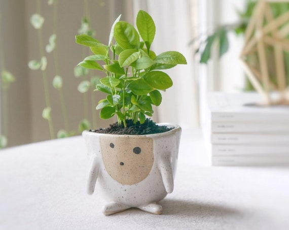 Ceramic Planter Pot - Gili the silly planter