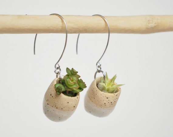 Plant Pot Succulent Earrings