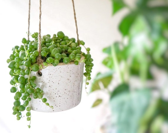 Simple Hanging Planter with Drainage