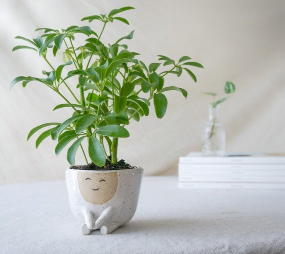 Ceramic Planter without Drainage