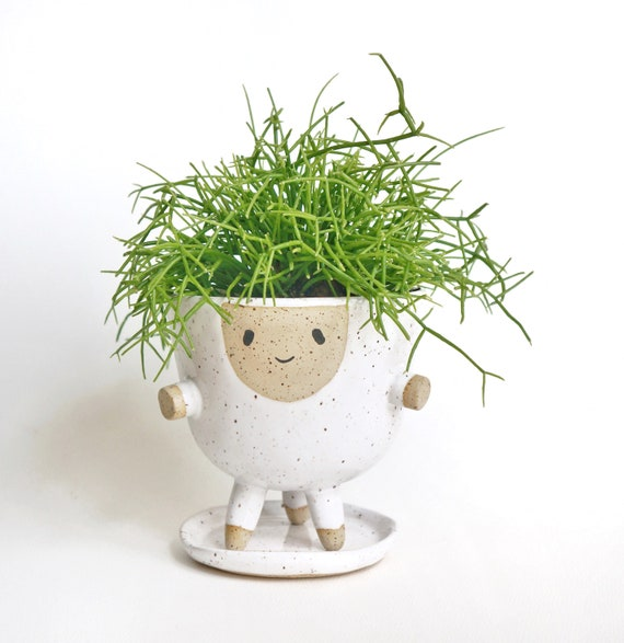 Go hooked indoor plant container accessories