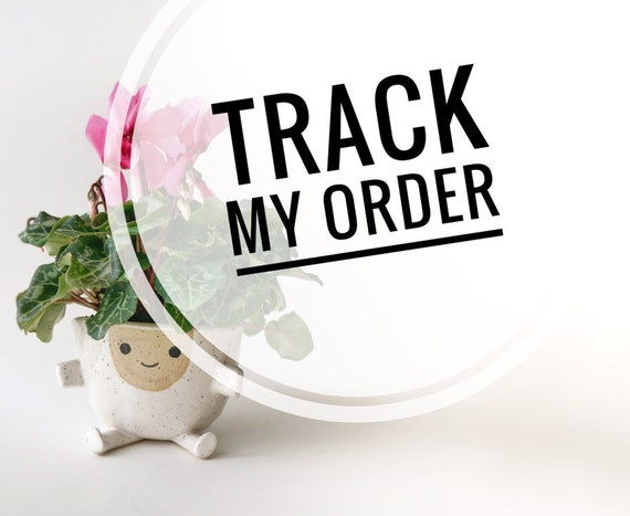 I would like to track my order