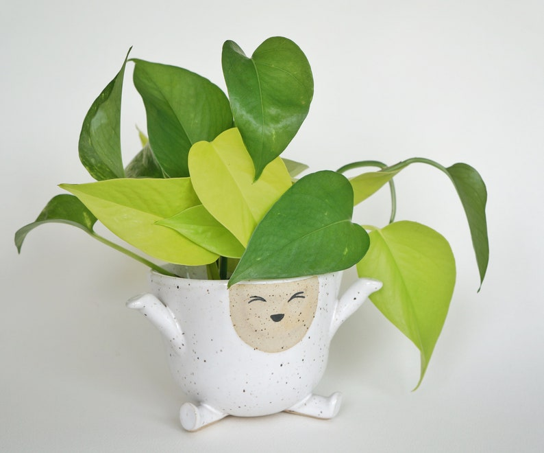 Joy The Happy Planter Pot image 1