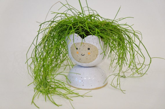 Planter Pot Daisy