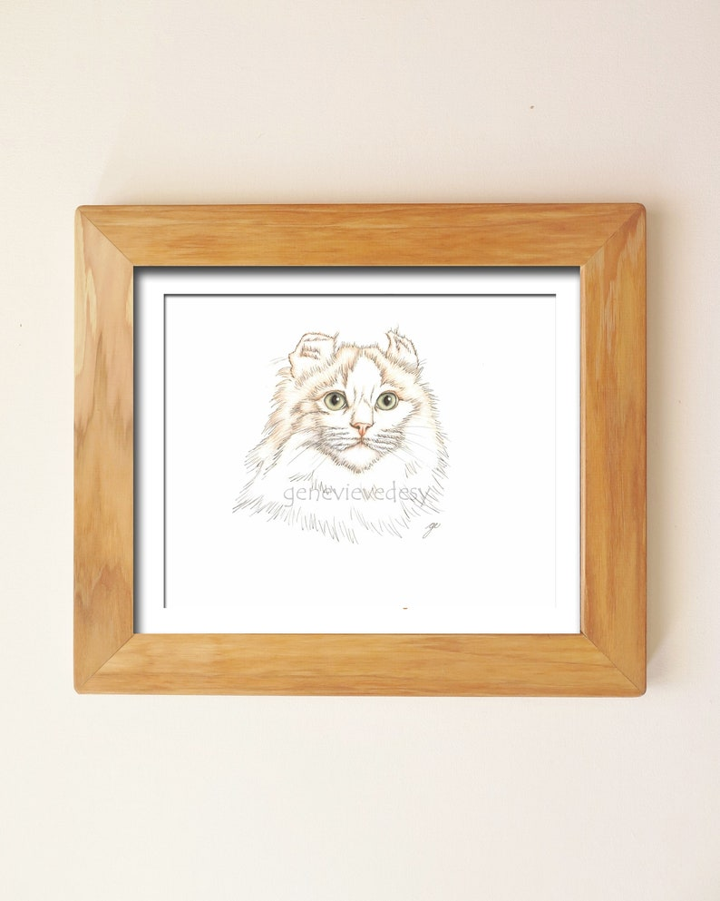 Custom 9 x 12 inch pet portrait  cat   kitten  kitty  colored pencil drawing  100/% hand-drawn!