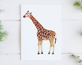 Giraffe (Reticulated) Print - EcoFriendly, Eco, Green, Recycled, Gives Back, Wildlife Conservation, Watercolor, Baby, Safari