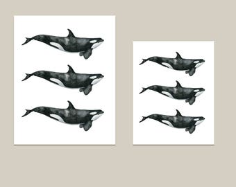Pastel Whale Wall Art 11x14 and 8x10