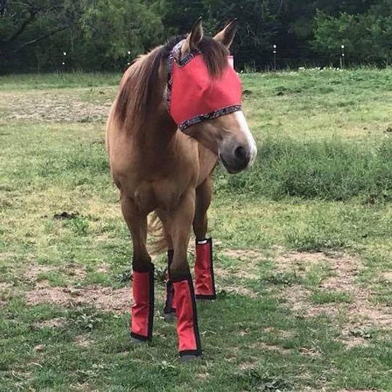 Straight Style Set Of 4 Fly Boots Fly Wraps  Leggings For Horses