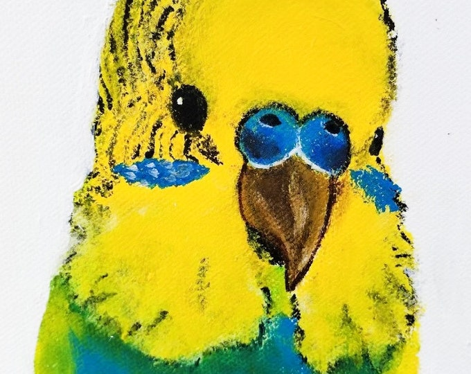 Yellow Budgie art, framed canvas print, budgie painting, budgie wall art
