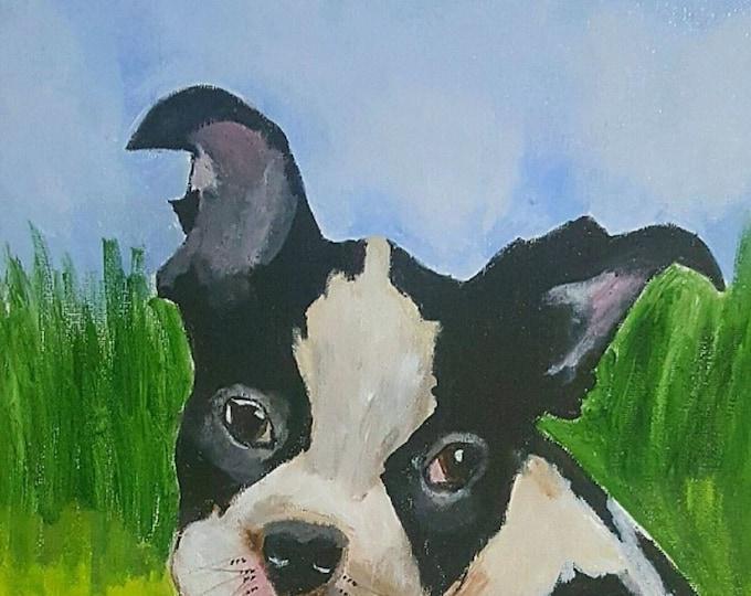 Boston Terrier art, dog Art Print, Wall Art, Pet Portrait, Home Decor Art Print, Boston Terrier Art, Boston Terrier Print, 8x8