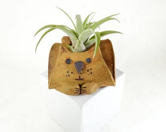 Cat Air Plant / Cell Phone Holder