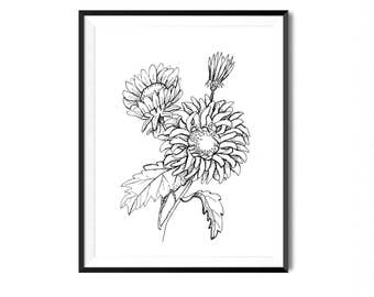 Flower art print etsy aster flower print botanical illustration wall art flower art print floral art botanical print black and white flower print flora art mightylinksfo