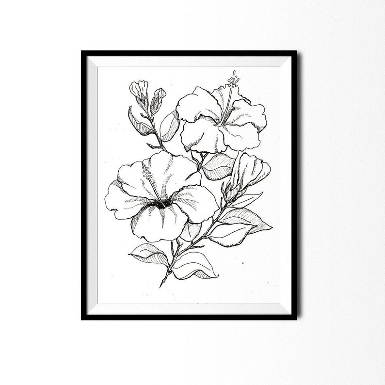 Hibiscus Print Botanical Illustration Wall Art Pen And Ink Etsy