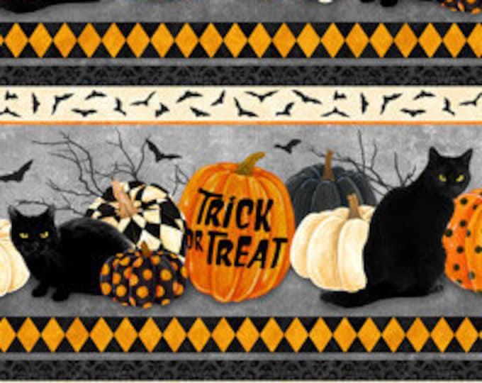 Northcott - Black Cat Caper - Border Stripe - Halloween - Border - Harlequin Pumpkins -  24115-99 - Sold by the Yard
