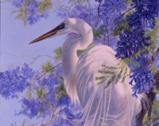 New - Northcott - Jacaranda - Panel - Crane/Heron -  DP24055 - Bird - Sold by Panel