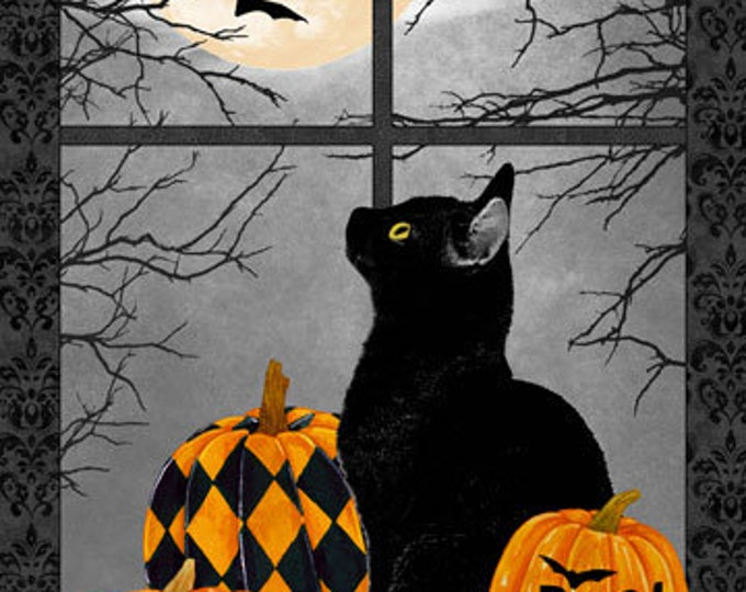 Northcott - Black Cat Capers - Halloween Panel - Panel - Black Cat Panel - Harlequin Pumpkins - Cat - 24114-99 - Sold by the Panel