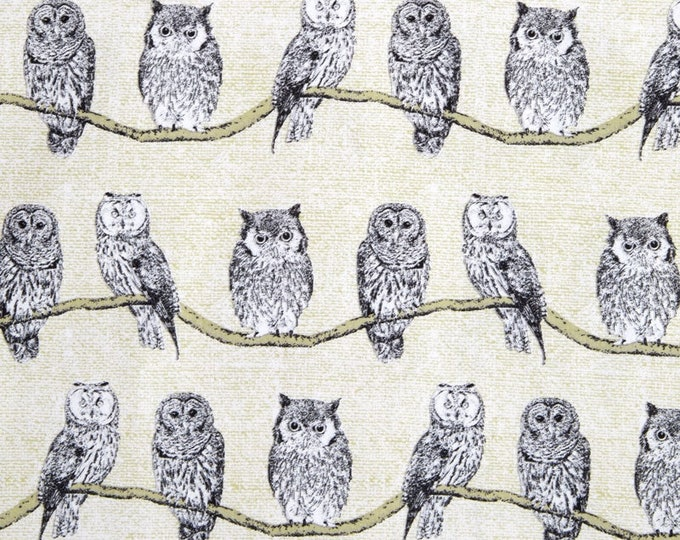 Michael Miller Fabrics - Wild Things - Whoo's There - Owl Fabric - Owls -  Sold by the Yard