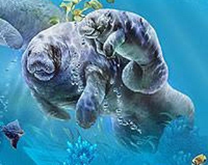 Elizabeth Studios - Gentle Giant - Manatee - 20000 - Aqua - Sea Life -  Sold by the Yard