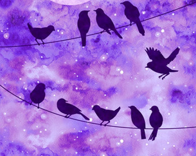 Northcot  - Artisan  Spirit Imagine - Panel - 22567 87 - Imagine - Birds - Purple background -  Sold by the Panel