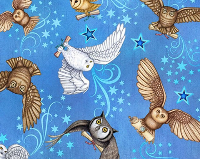 Quilting Treasures - Spellbound - Sold by Yard - Owls - Light Blue - 26612 B