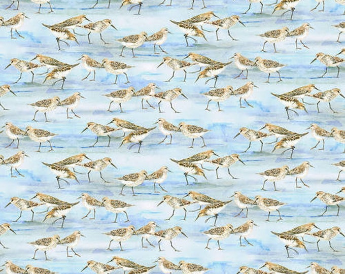 Henry Glass - Coastal Paradise  - 1503-11  - Sand Piper -  Bird fabric  - Birds  - Beach - Sold by the Yard