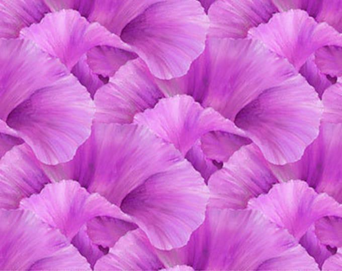 "Northcott - Lush - Supersize Iris - Peddles  - Magenta/Pink - DP24192-28 - 36""x43"" - Sold by the Yard"