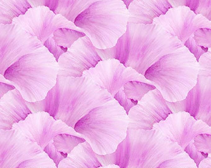 "Northcott - Lush - Supersize Iris - Peddles  - Magenta/Pink - DP24192-26- 36""x43"" - Sold by the Yard"