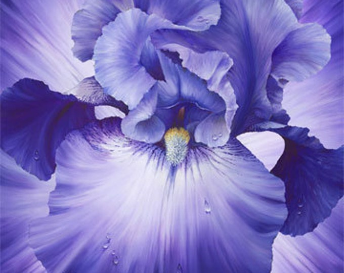"""Northcott - Lush - Supersize Iris - Oversized Panel -Violet  - DP24191-85- 43""""x43"""" Panel - Sold by the Panel"""