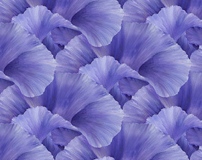 """Northcott - Lush - Supersize Iris - Peddles  - Violet - DP24192-85 - 36""""x43"""" - Sold by the Yard"""