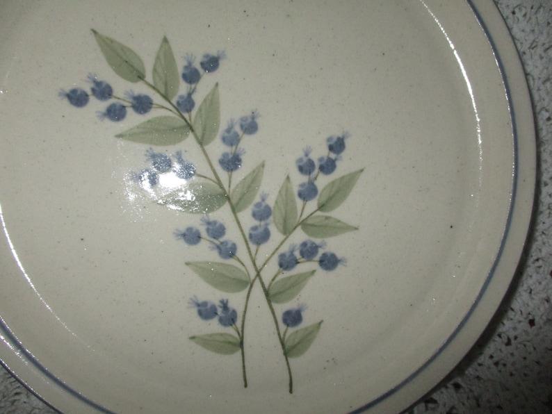 Vintage Union Stoneware Blueberry Plate 1983