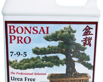 Bonsai Trees Supplies For Beginners Experts By Dallasbonsai