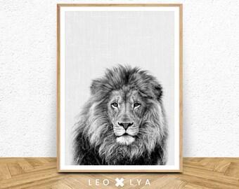Black And White Lion Print, Lion Wall Art, Large Poster Safari, Nursery  Prints, Safari Nursery, Lion Art, Digital Download, Lion Print