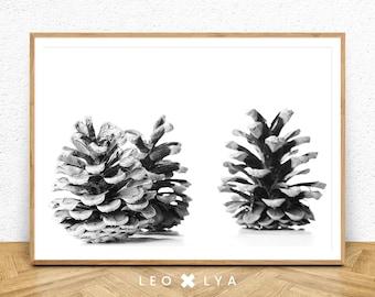 Pine Cone Print, Scandinavian Wall Art, Nature Decor, Pine Tree Print, Modern Minimalist, Nordic Print, Pine Cones Poster, Digital Download